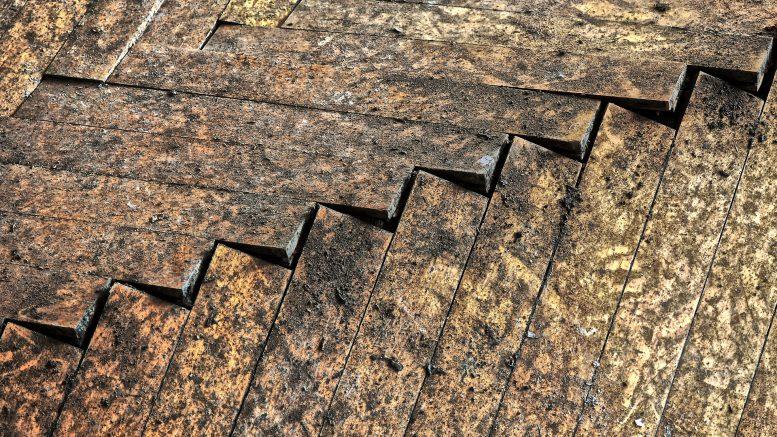 traitement préventif bois, traitement curatif bois